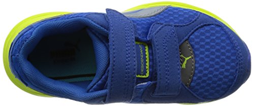 PUMA Schuhe Blau