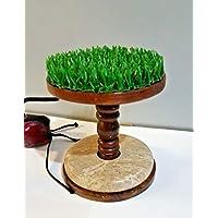 """Percha de madera de cetrería de 5.5"""" Kestrel & Merlín, mármol y AstroTurf (tamaño pequeño)"""