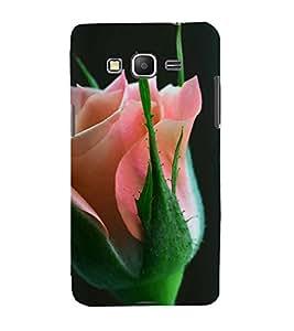 Fuson Designer Back Case Cover for Samsung Galaxy Grand Prime :: Samsung Galaxy Grand Prime Duos :: Samsung Galaxy Grand Prime G530F G530Fz G530Y G530H G530Fz/Ds (Flower Bloom Blossom Floret Floweret)