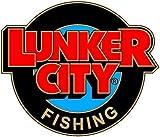 Lunker City Fin-S Fish 2,5' (6cm)***No-Action Shad***Verfügbar in 32 Farben***V-Schwanz***Noch in 6 weiteren Größen erhältlich***Top Barsch. Forelle, Zander und Hechtköder***, Arkansas Shiner
