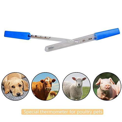 Pawaca Mercury Termómetro, Termómetro para Mascotas, Veterinario, Digital para Perros, Gatos y Otros Animales, medir la Temperatura de la Mascota con precisión con Punta Flexible.
