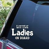 38k Vinyl Graphics Baby Car Stickers