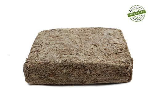 Sphagnum Moos aus Chile 1000g