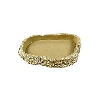 UEETEK Resin Pets Feeding Plate Reptile Feeding Bowl Vivarium Food Water Dish Bowl for Turtle Gecko Snake Pet Breeding… 16