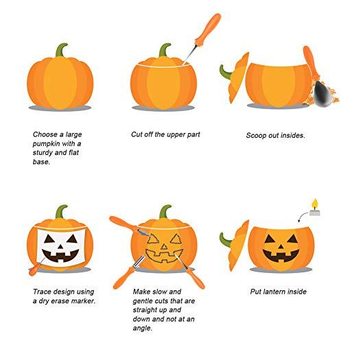 Secura Pumpkin Carving Tools - Professionelle Edelstahl 10 Stück Carving Tools für Halloween Jack-O-Laternen Kürbis Party Dekorationen (10 pc) - 3