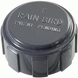 Rain Bird Kreuzstück 1/'/' RB1220-010 PVC Verschraubung Rainbird Ventilanschluss