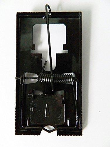 Tapette à Souris Métal 6x11,5cm Piège petit rongeur Socle Fer Métal