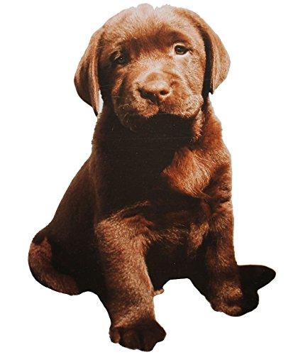 Unbekannt großes XL Fensterbild - Hund - BEIDSEITIG Bedruckt & selbstklebend - statische Haftung - Wiederverwendbar ! Tattoo Zimmer - Fenstersticker / Fensterbilder - H..