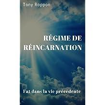 Régime de réincarnation: Fat dans la vie précédente (La désinstallation t. 3)
