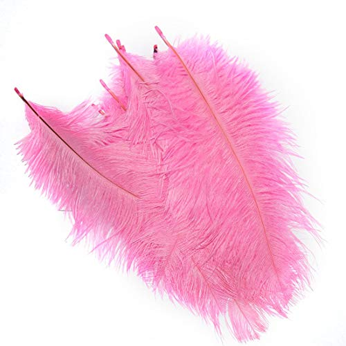 Dress With Feather - Colorful Ostrich Feather 10 Pcs Set Trimming Height 15 20cm Feathers Ribbon Party Dresses - Plumes Plume Pillow Maribou Mask Skirt Gown Sailor 12-14 Vase Pink Boots Cleanin