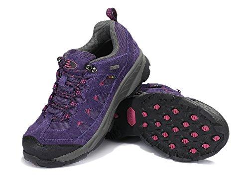 TFO, Chaussures basses pour Homme Violet