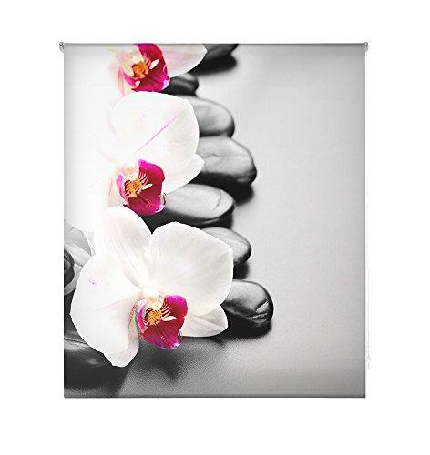 HappyStor HSCZ1465 Estor Enrollable Estampado Digital Zen Tejido Traslúcido Medida Total Estor:100x250 (**Solo Ancho Tela:96-97cm.**)