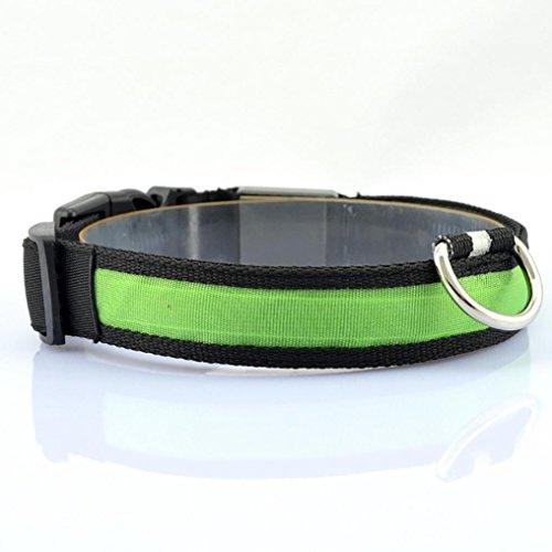 Gaddrt LED Nylon Einstellbar Hund Haustier Halsbänder Sicherheit Hundehalsband Nacht Halskette Anti-verloren Leuchtet & Blinkt Glitzer Haustier Geschirre (L, (Katze Kostüm Flash Im)