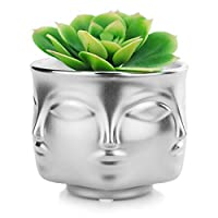 VanEnjoy Modern Decorative Nordic Style Face Statue Planter Flower Pots,Faces on 3 Sides, 4.37 Inches