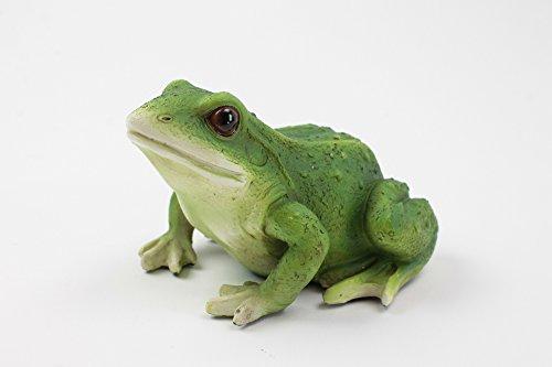 Frosch in grün sitzend