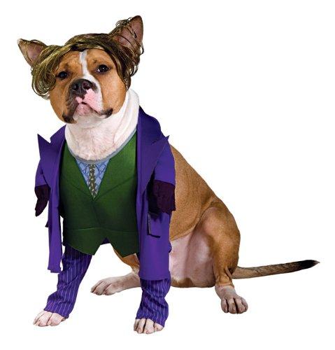 Joker Kostüm Batman TDK Hund (Kostüme Joker Batman Aus)