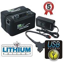 Powerhouse Batería de litio con conexión USB para carrito de golf 12V 36 LiFePO4.