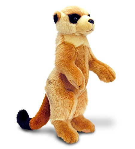 For Someone Very Special – Squeeze It Tight 34cm Meerkat Soft Toy Animal – Low Cost Great value Present Gift Idea For My First Teddy Bear – Girl Girls Boy Boys Children Kids Child – Suitable For Age 3+