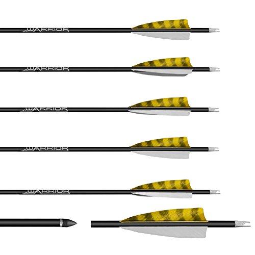 6 Stück Gold Tip Warrior Carbonpfeile Spine 500 mit 4