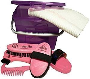 Haas Putzbox für Kinder ein Putzkasten in lila - pink gefüllt mit Striegel Kardätsche Hufkratzer Waschbürste Mähnenkamm und Tuch