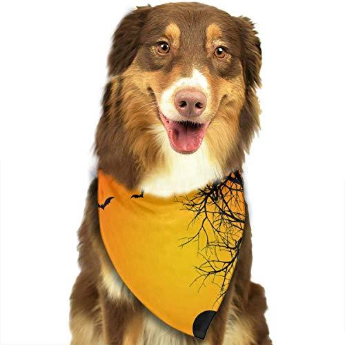 Haustier Schal Halloween Kürbis Classic Pet Bandana Haustier Halsbänder für Hund Katze eine Größe ()