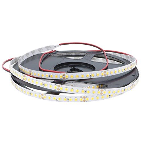 iluminize LED-Streifen: hocheffizienter LED-Streifen mit 160 LEDs pro Meter, 148lm/W, SMD2835, 8 mm breit, hoch selektiert, 24V, 10,6W pro Meter, 5 m auf Rolle (4000K Ra 80 IP65NANO)