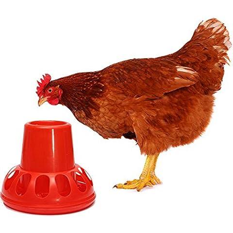 LM Polli Chook Gallina Anatre Feeder Waterer bevitore plastica rosso Pollame Oche conigli Piccioni Backyard