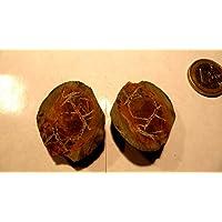 Septarien Paar, 30,50 g schwer, mit wunderschöner Zeichnung, Farben und Strukturen. Made by Nature. preisvergleich bei billige-tabletten.eu