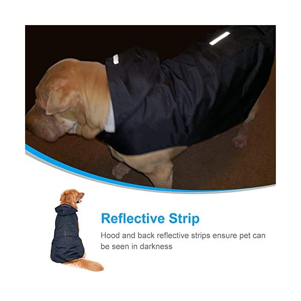 Zellar Dog Raincoat 4