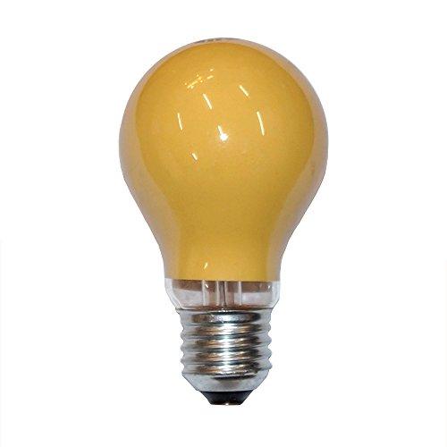 ampoule-a-incandescence-orange-25-w-e27-25-w-ampoules-a-incandescence-party-jardin-illu