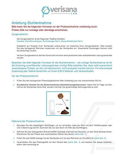 Leaky Gut Complete Stuhltest – Test auf Durchlässigen Darm, inkl. Zonulin & Alpha-1-Antitrypsin – Bei Magen Darm, Durchfall – Nachweis von Leaky Gut, Candida, Darmflora,