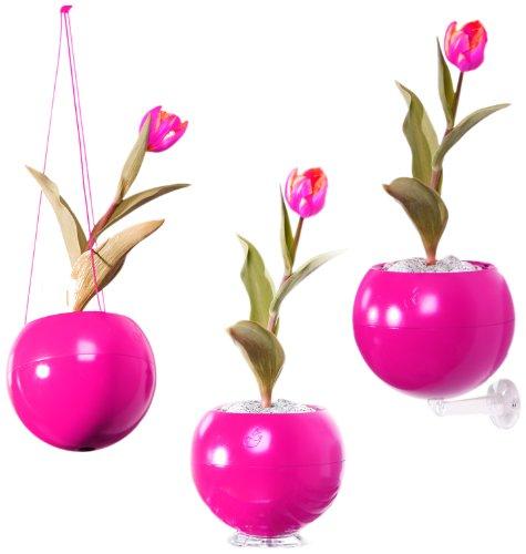 greenbo-greenball-macetero-con-3-soportes-y-reserva-de-agua-17-x-143-cm-color-fucsia