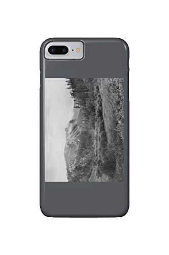 Harney's Peak after a Storm Photograph (iPhone 7 Plus Cell Phone Case, Slim Barely There) (Peak Storm Womens)