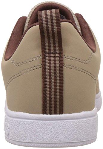 adidas neo Men's Vs Advantage Clean Stcark and Auburn Sneakers - 9 UK/India (43.33 EU)