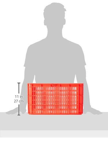 Basil Crate L bicicleta Buz/ón 36/x 49/x 28/cm red