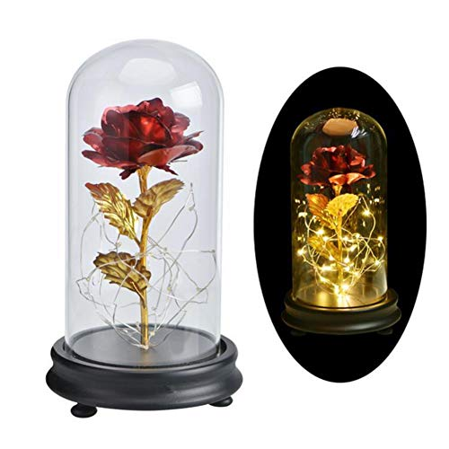 ated 24K, Beauty and The Beast Rose, Romantic Eternal Pink, Rose Gold Red, Artificial Flower with LED Light Glass Dome, Red ()