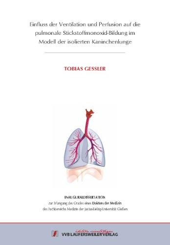 Einfluss der Ventilation und Perfusion auf die pulmonale Stickstoffmonoxid-Bildung im Modell der isolierten Kaninchenlunge