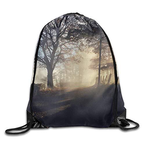 uykjuykj Tunnelzug Rucksäcke, Tree Path Light Fog Cute Gym Drawstring Bags Travel Backpack Tote School Rucksack Lightweight Unique 17x14 IN (Rucksäcke Dollar Tree)