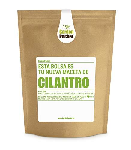 Kit de Cultivo de Cilantro