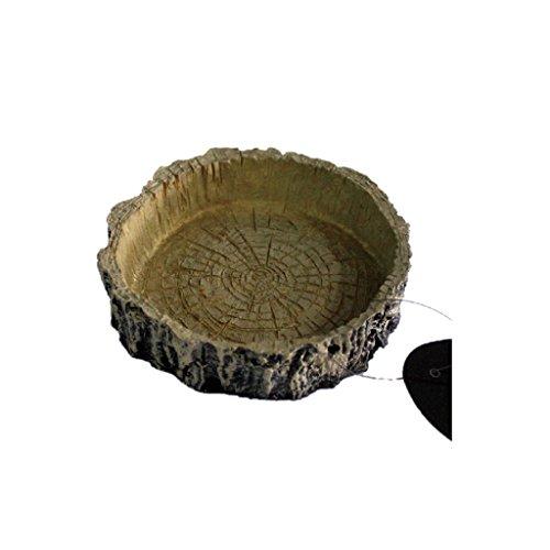 Reptile-Terrarium-Worm-Water-Dish-Feeder-Tortoise-Spiders-Feeding-Bowl-10-x-3-x-2cm