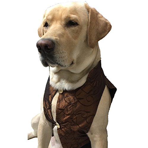 Wagging Fashion Dark Brown Nehru Jacket For Dogs (8)