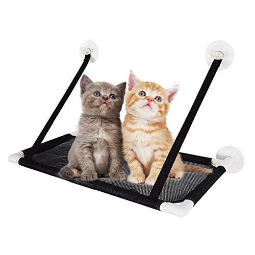 PETCUTE Katzen Hängematten Fensterplätze Katzen hängematten Fenster Katzendecke Katze Betten fensterliegeplatz für Katzen Bis zu 10kg