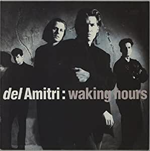 Waking hours (1989/90) [Vinyl LP]