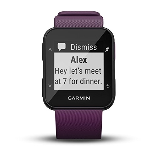 4147O0FPC1L. SS500  - Garmin Forerunner 30 GPS Running Watch with Wrist Heart Rate, Amethyst