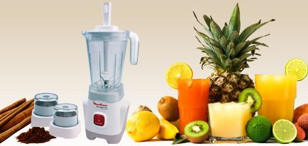 Moulinex LM242 Special Edition Table Top Blender With Mill and ...