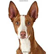 Journal: Podenco