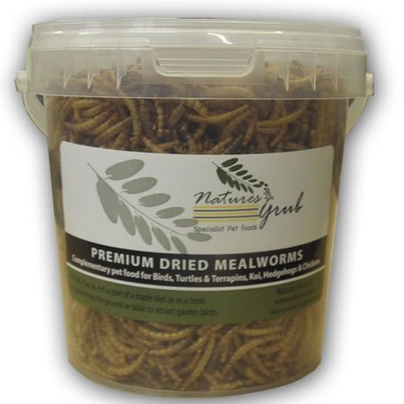 natures-grub-mealworms-400g