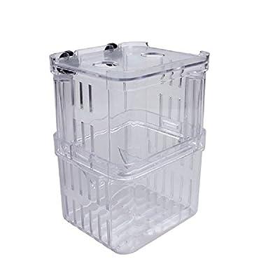 Guyin 1 stücke Fischzucht Boxen Doppel Schlüpfen Inkubator Isolation Acryl Mini Aquarium Tanks Durable