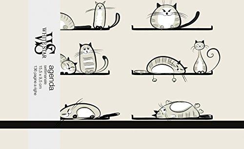 Zoom IMG-1 edizioni white star gatti 2