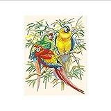 HLLCY Tropische Papageien Malen nach Zahlen Handgemalte Farbgebung nach Zahlen auf Leinwand Wandbilder für Wohnzimmer 40X50cm Rahmenlos